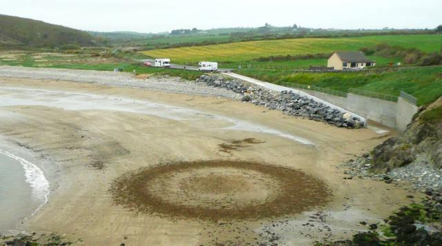 Horse Sand Circle Sean Coran